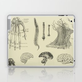 Vintage Anatomy Print Laptop & iPad Skin