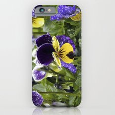 Violets on a rainy morning iPhone 6s Slim Case