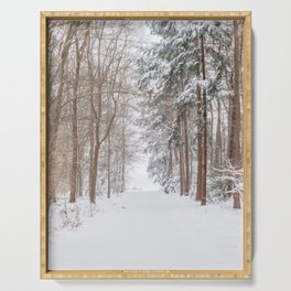 County road covered in snow | Winter snow landscape in the Netherlands 2021 | Landscape Photography Serving Tray