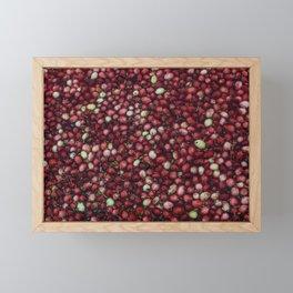 cranberry party2 Framed Mini Art Print