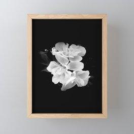 geranium in bw Framed Mini Art Print