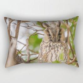 Long eared owl sitting on a tree (Asio otus) Rectangular Pillow