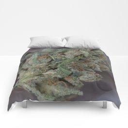 Close up macro of Dr. Who Medicinal Medical Marijuana Comforters