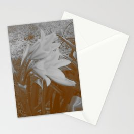 Old Flowers Stationery Cards