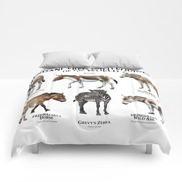 Endangered Equines of the World Comforters