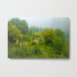 Green forest after raining Metal Print