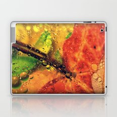 Wet Red Maple Laptop & iPad Skin
