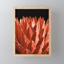 Agave Chic #4 #succulent #decor #art #society6 Framed Mini Art Print
