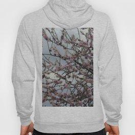 Almond tree blossom Hoody