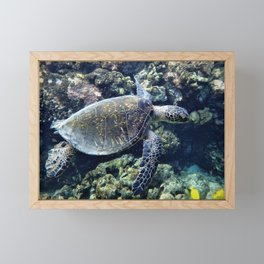 I'm Free - Like Flying -  With the Turtles by Reay of Light Framed Mini Art Print
