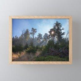 Owl Mountains Framed Mini Art Print