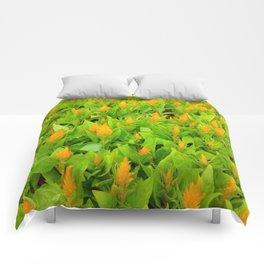 Field of Celosia Comforters