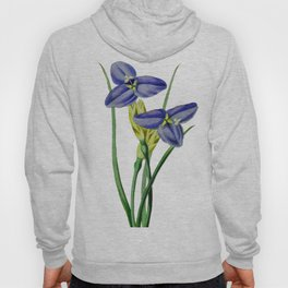 Violet flowers with beautiful green stems Hoody