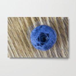 one blueberry, closeup Metal Print