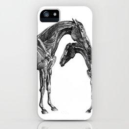 Horsy Horsy iPhone Case