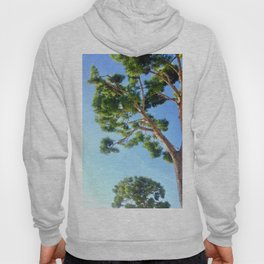 Sun Trees Hoody