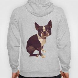 Low Polygon Boston Terrier Hoody