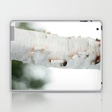Birtch Laptop & iPad Skin