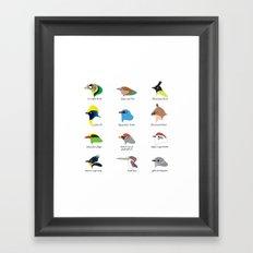 Montane Birds Series 1 Framed Art Print