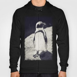 African Penguin - Animal Photography #Society6 Hoody