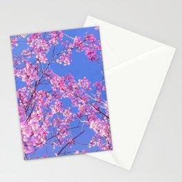 Peach blossom, Peach flower, Photo flower, beautiful view, Peach blossom hill,  Stationery Cards