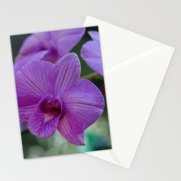 A Treasure for Trisha Stationery Cards