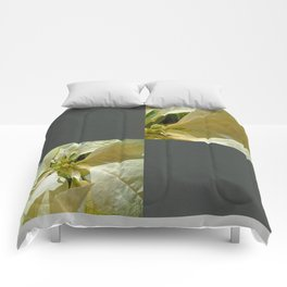 Pale Yellow Poinsettia 1 Blank Q6F0 Comforters