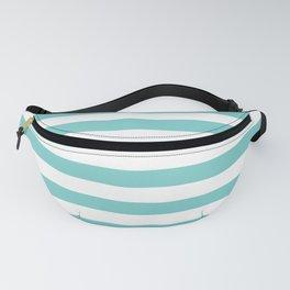 Horizontal Aqua Stripes Fanny Pack
