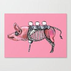 Pirate Pig Canvas Print