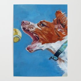 Brittany Spaniel Dog Portrait Poster