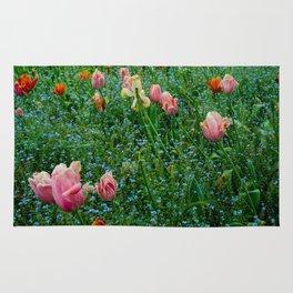 Tulips, Giverny, France, 2015 Rug