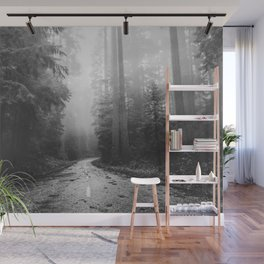Redwood Forest Adventure Black and White - Nature Photography Wall Mural