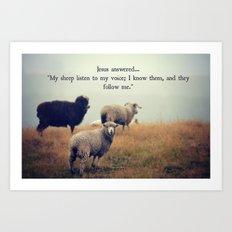 My Sheep Art Print
