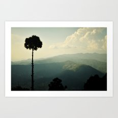 High as a tree Art Print