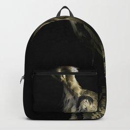 Resting Reflection Backpack