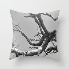 Driftwood Ladder B/W Throw Pillow