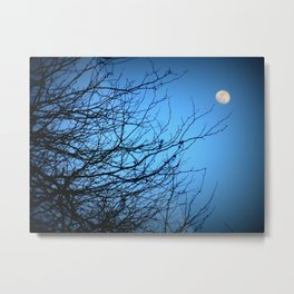 Moonlight at Dusk 2 Metal Print