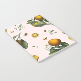 Oranges and Butterflies in Blush Notebook