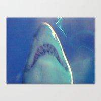 jaws Canvas Prints featuring Jaws by Bunhugger Design