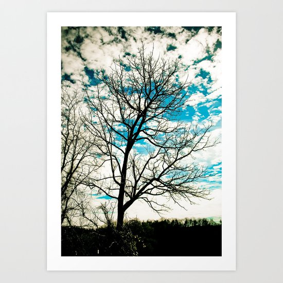 Bare Tree & Clouds Art Print
