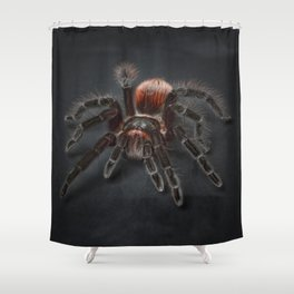 The Scary Spider Shower Curtain
