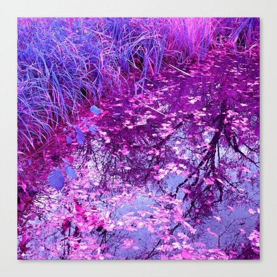 purple garden pond I Canvas Print