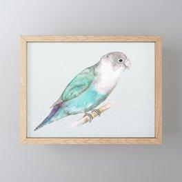 Pale blue lovebird Framed Mini Art Print