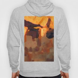 Mesa Verde National Park Colorado Hoody