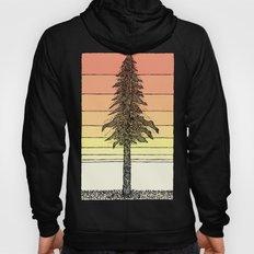 Coastal Redwood Sunset Sketch Hoody