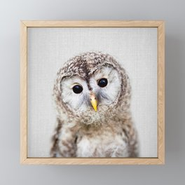 Baby Owl - Colorful Framed Mini Art Print