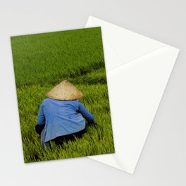 Other day on the rice field Stationery Cards