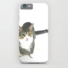 Miojo Cat. iPhone 6s Slim Case