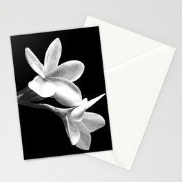 White Flowers Black Background Stationery Cards
