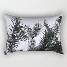Silver Fir Abies Alba Abstract Rectangular Pillow